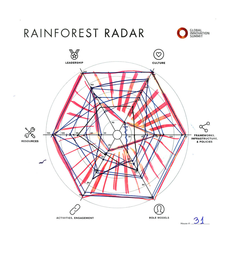 Rainforest_Radar31_1200X1300.jpg