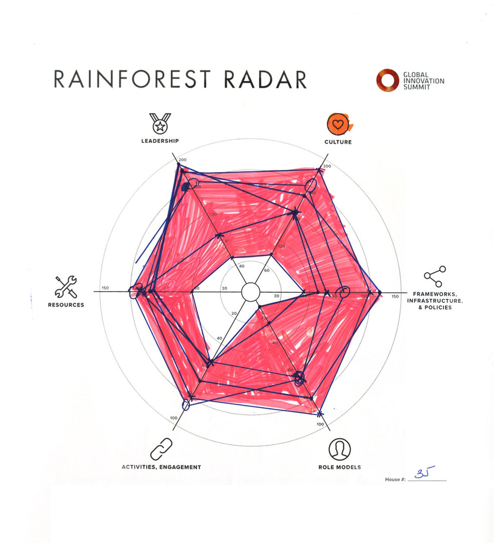 Rainforest_Radar35_1200X1300.jpg