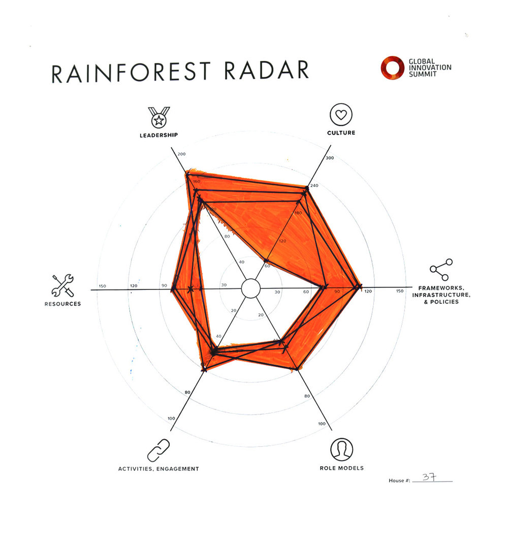Rainforest_Radar37_1200X1300.jpg