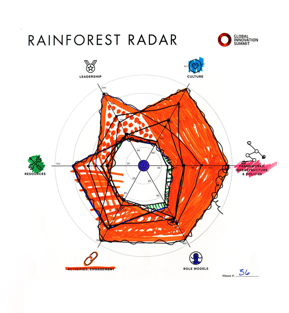 Rainforest_Radar36_1200X1300.jpg