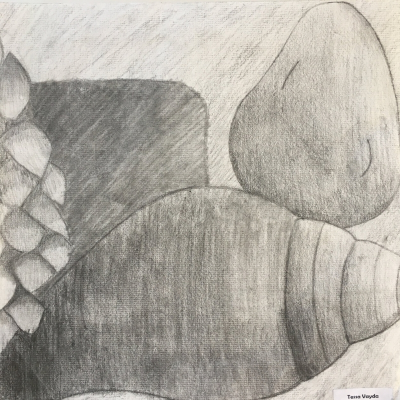 Still Life- Pencil Sketch
