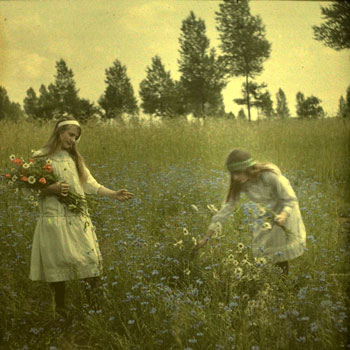 Alfonse Van Besten, 'Two girls picking Cornflowers 'c. 1912, autochrome