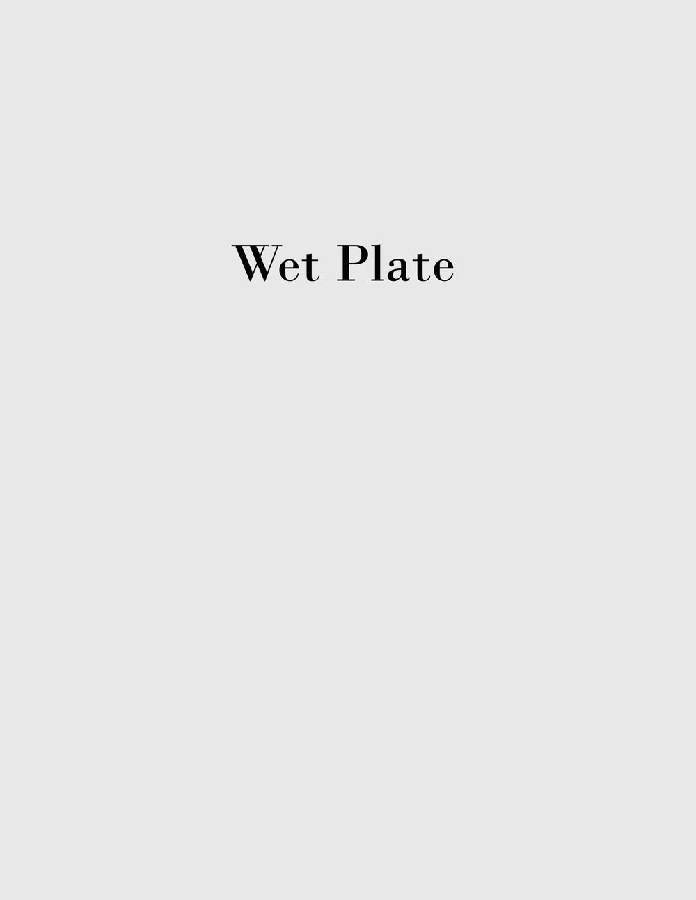 wert plate 2.jpg