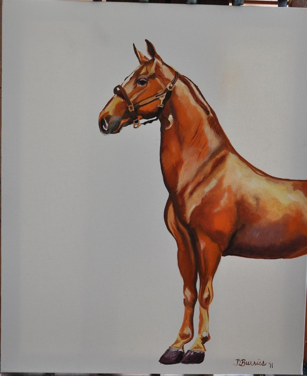 Half a horse