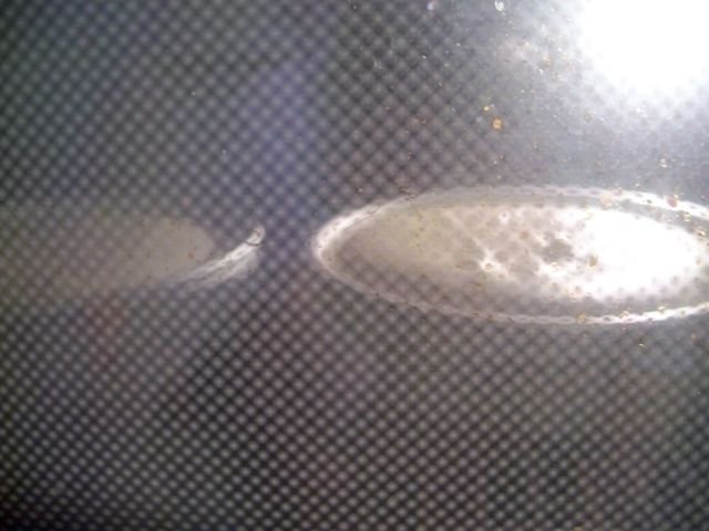 circle cakes in the oven