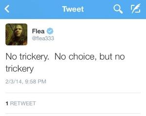 flea a.jpg