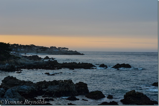 13_Mar_monterey_001_edit