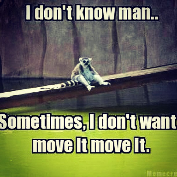 """I don't know what man. Sometimes, I don't want move it move it"""