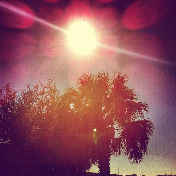 Pretty day!