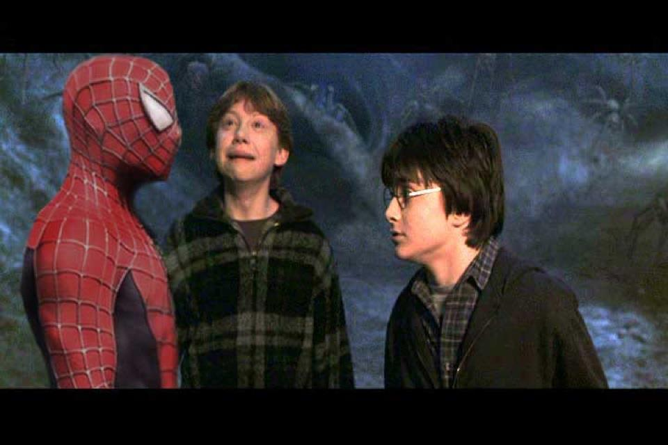 "HAHA that-harry-potter-blog: Awesome ""I HATE SPIDERS"""