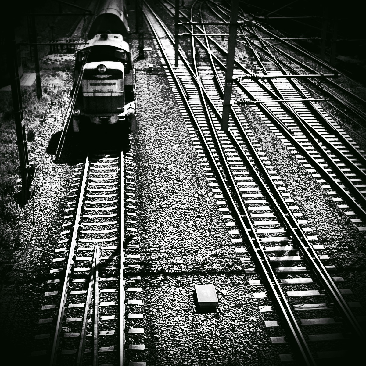 galeria365 :      Day 44/365 - Rails.    An old train going north.    I used  Camera+  (Clarity, square crop),  PictureShow  (Noir, vignetting).   Listening to   Stone Temple Pilots - Plush   (unplugged).