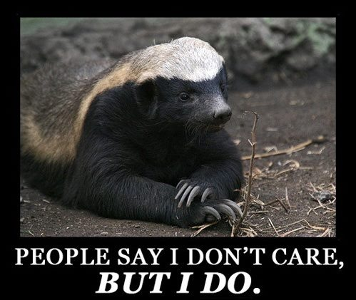 """Not true"" ""honey badger don't care"""