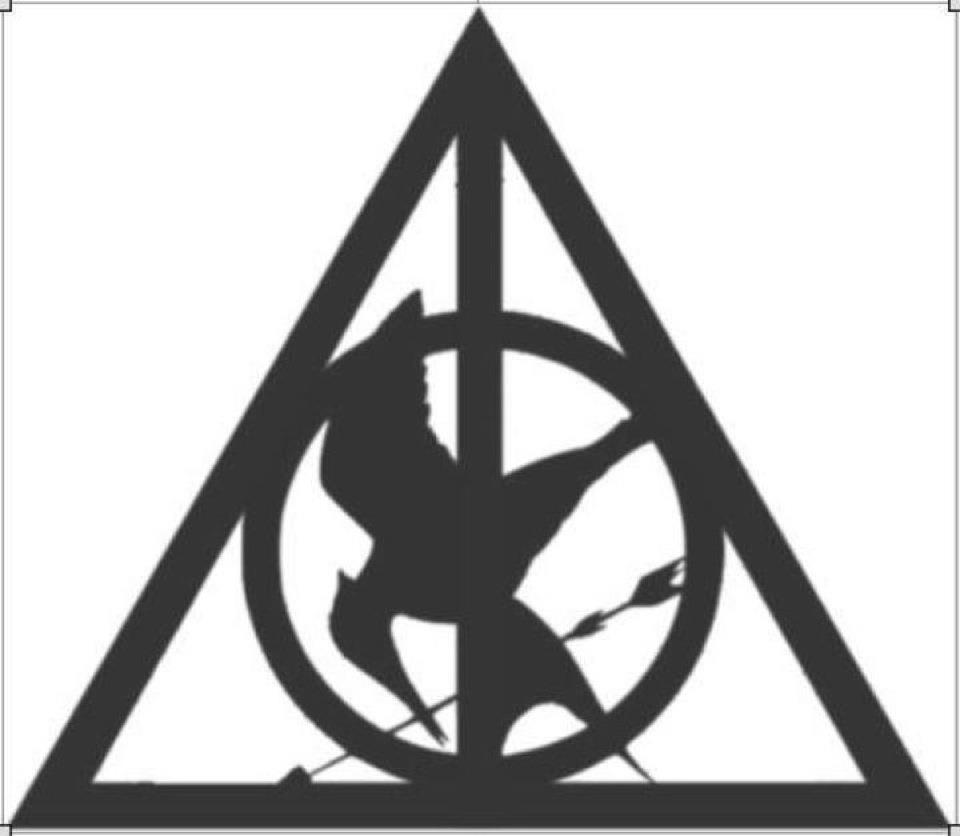 Harry Potter meets The Hunger Games