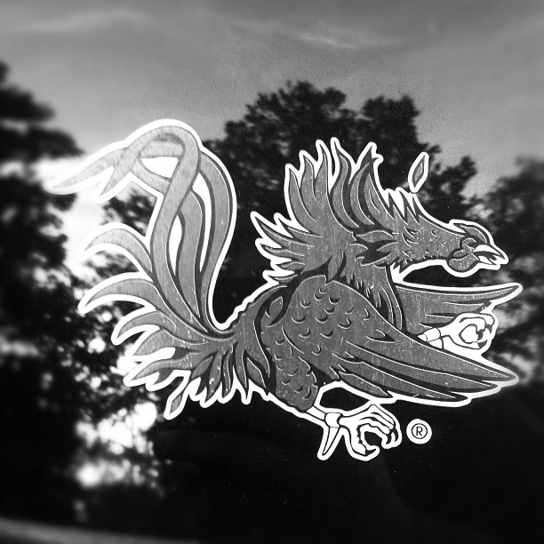 Gamecocks (Taken with instagram)