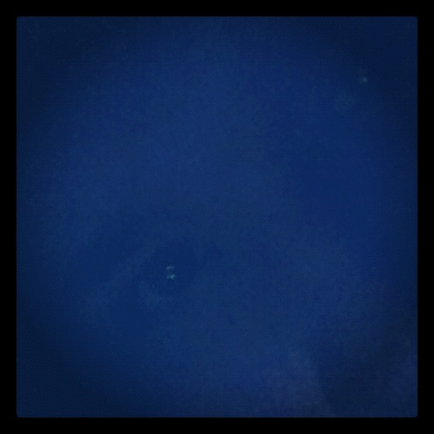 BlueMooneyes2 (Taken with  instagram )