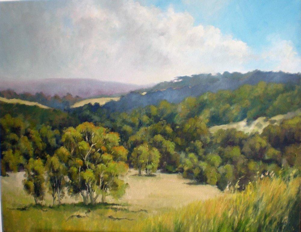 valley hills.jpg