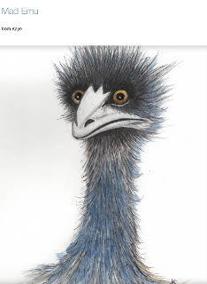 Mad Emu Kaye McCrae Watercolour.jpg