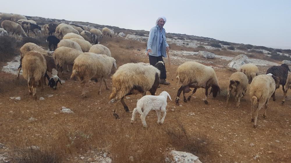 My Shepherd,indeed!