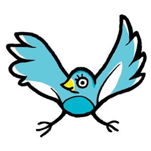 nmss_bird_web.jpg