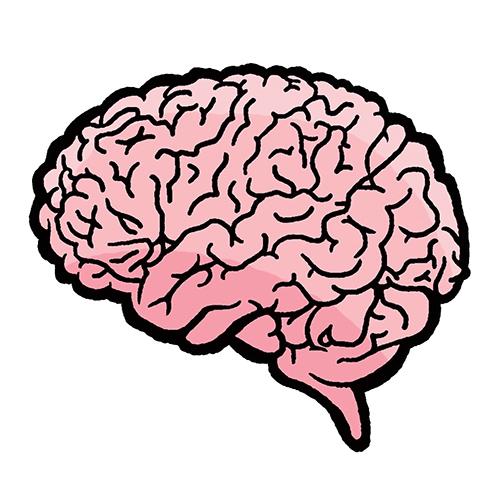 nmss_brain_signal_web.jpg