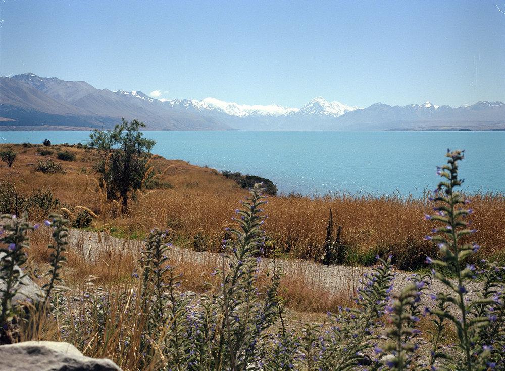 Lake-Tekapo.jpg