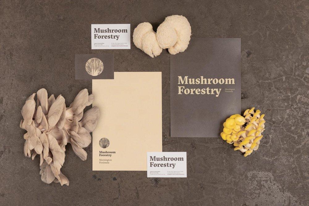 Vibranding_Mushroom_Forestry_branding_1640_3.jpg