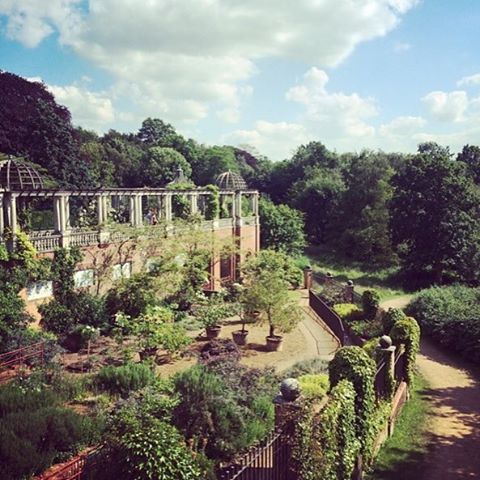 Another North London hidden treasure is up in our blog as part of our 'reasons to love London' series. Hampstead's vast, glorious and otherworldly Pergola and Hill Gardens.  Check it out, link in bio!  #electricalshop #lovelondon #hampstead #visitlondon #hillgardens #hampsteadpergola