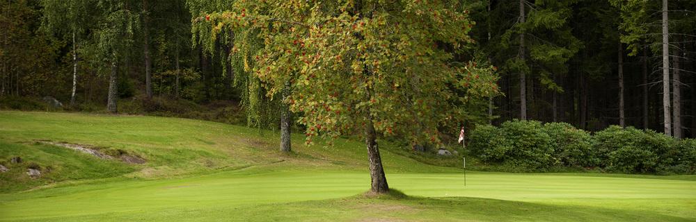 Webprofile for Onsøy Golfklubb.