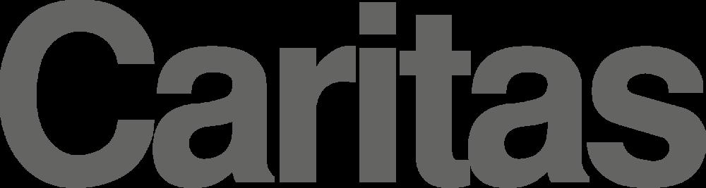 Caritas-Austria-01 [Konvertiert].png