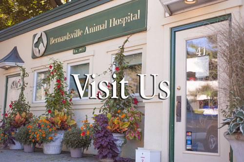 visit_us.jpg
