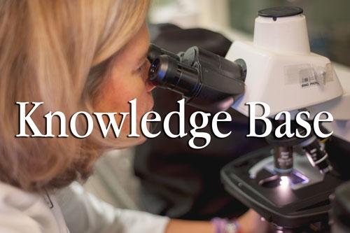 knowledge_base.jpg