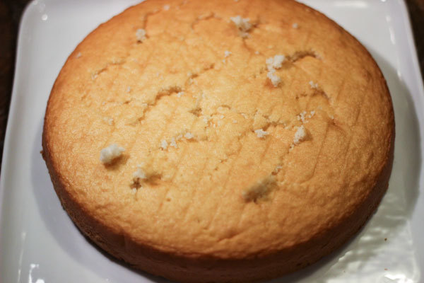 110513_coconut_cake.jpg