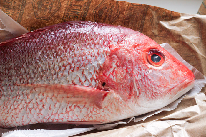 070914-red-snapper-whole.jpg