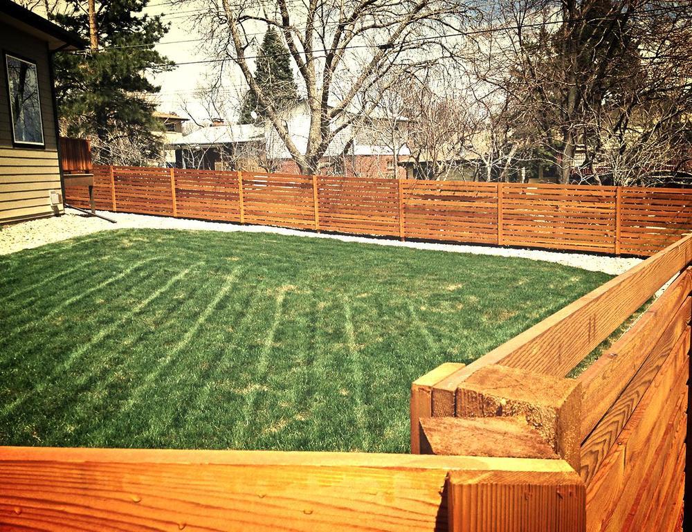 Back Fence.