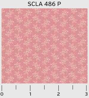 SCLA_486_P.jpg