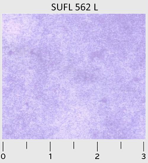 SUFL-562-L.png