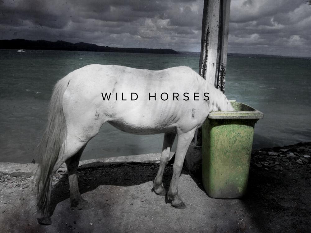 Title: Wild Horses