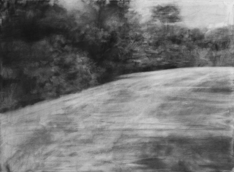 that place where we met that time   2014   charcoal on paper   29x42""