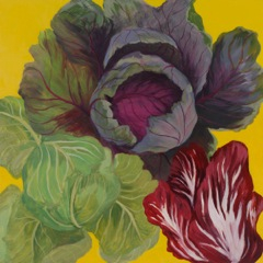 Cabbage and Treviso, oil on board, 18 x 18""