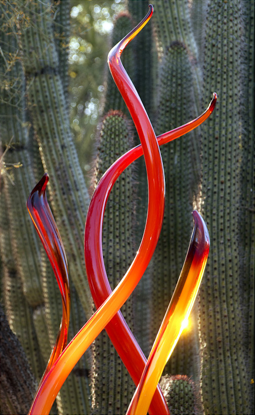"from ""Chihuly Triptych"" by Susan Dooley"