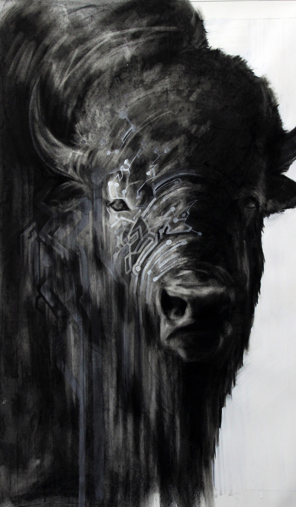 Circuit Bison,  2012  Charcoal and Acrylic on stretched paper  28x48""