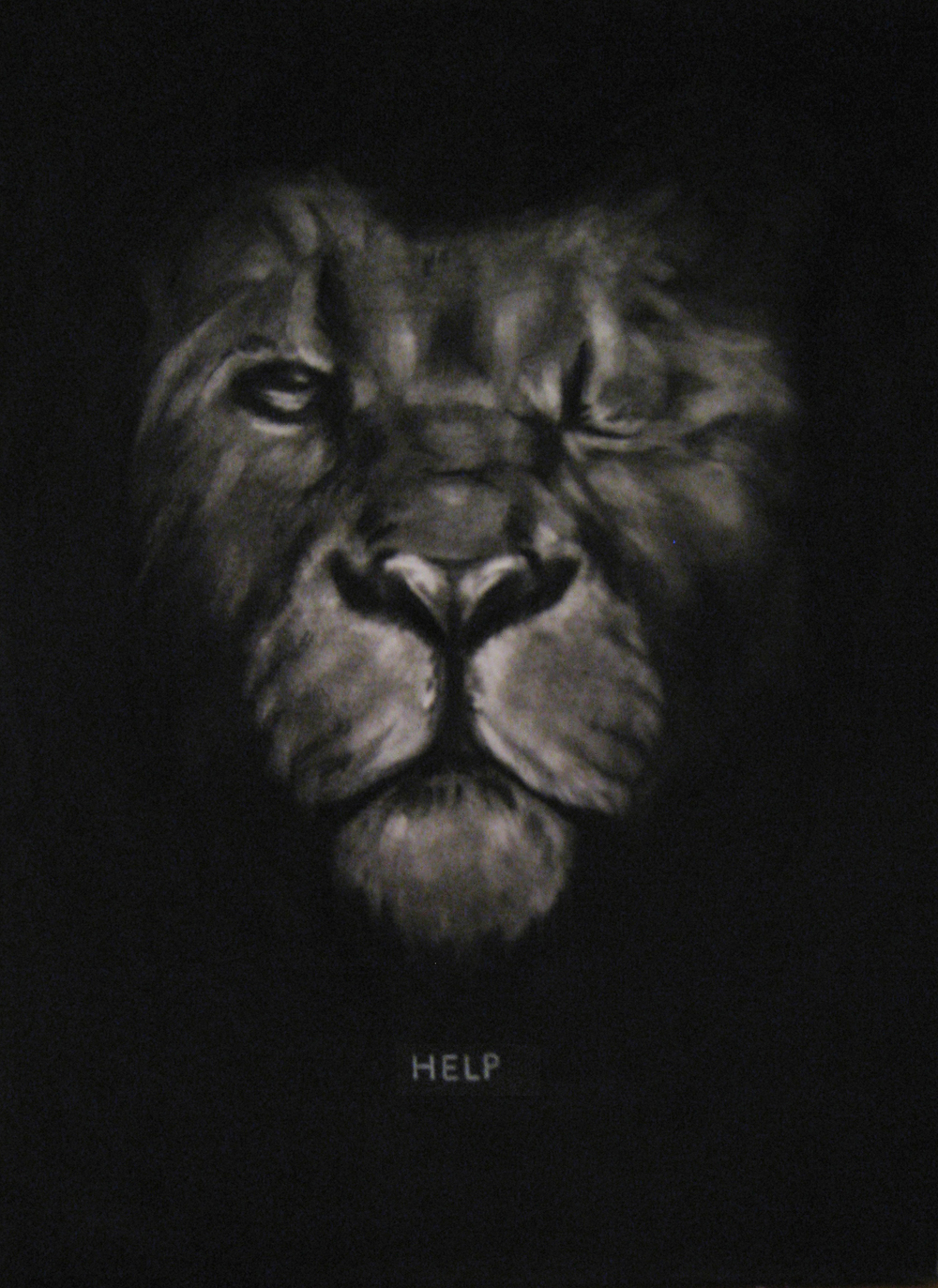 HELP,  2014  Charcoal on stretched paper  18x24""