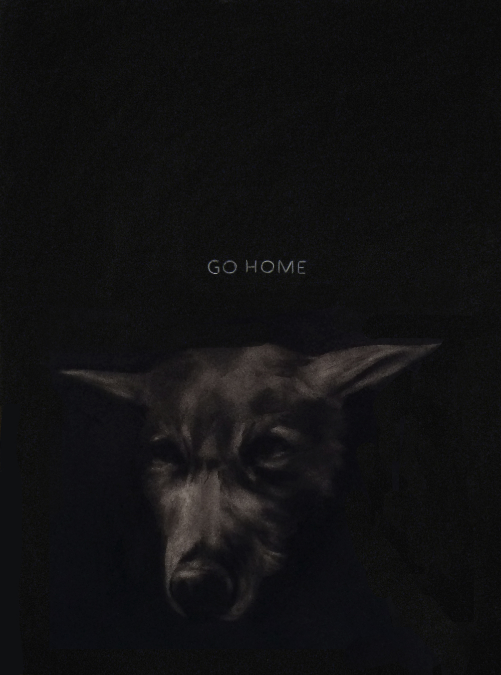 GO HOME,  2014  Charcoal on stretched paper  18x24""