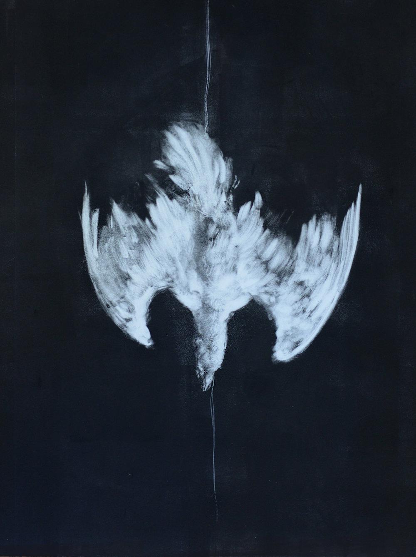 Fugue (Pigeon), 2016