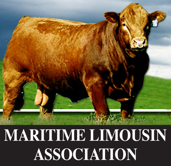Maritime Limousin Assoc.jpg