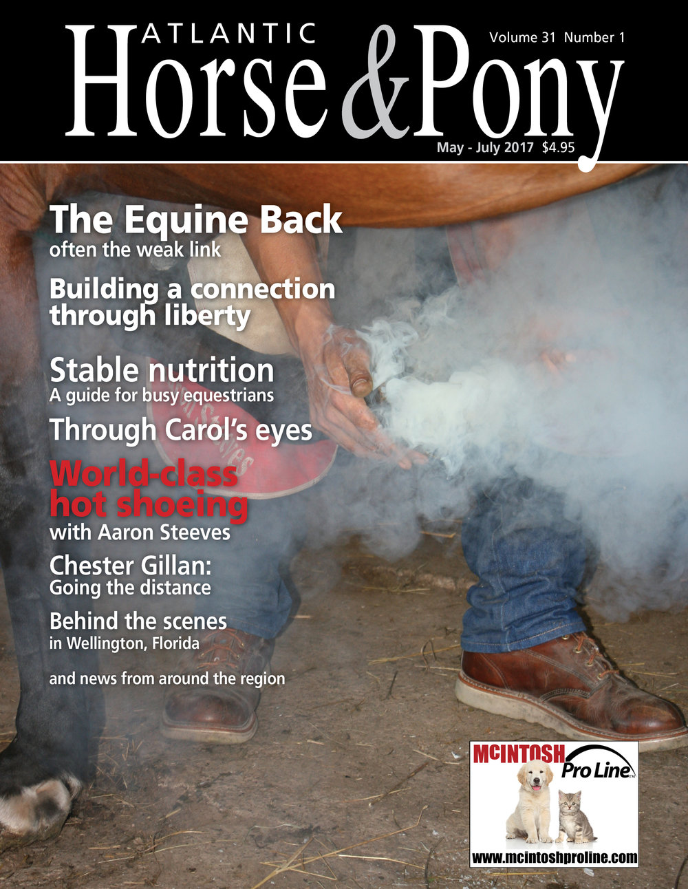 HorsePonyMay2017.jpg