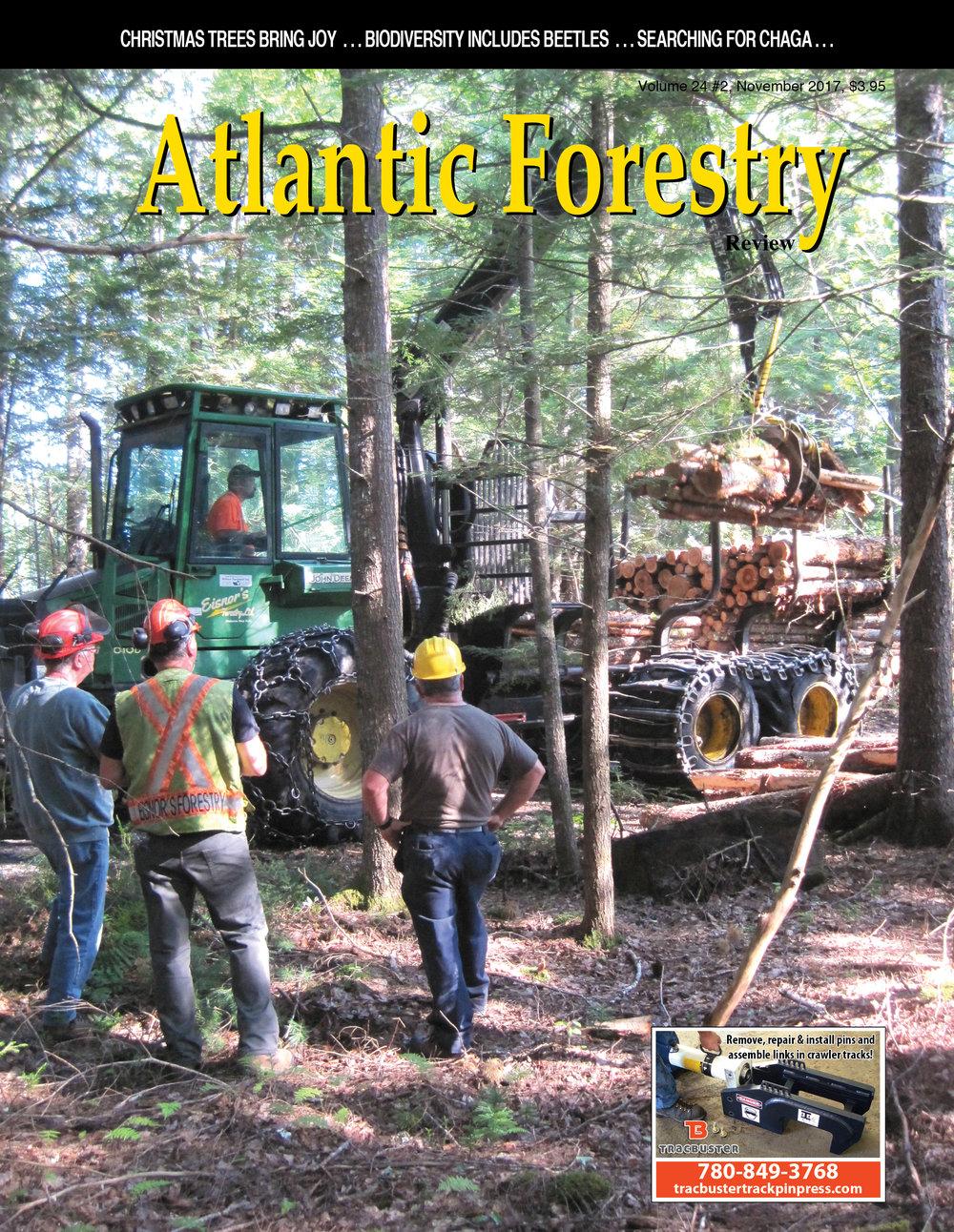 AtlanticForestry.jpg