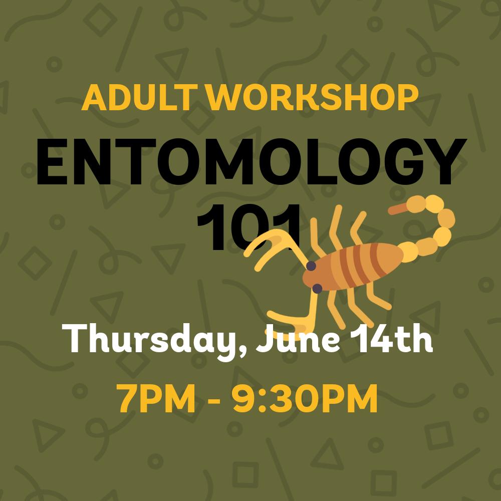 entomology101 _adultworkshop_square.png