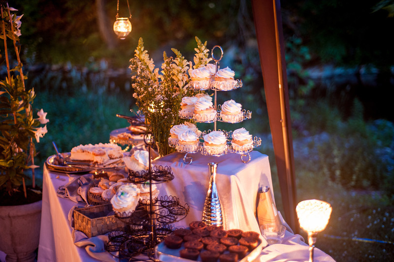 CandaceColeReception152-L.jpg