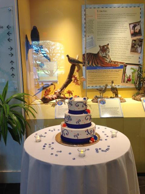blue white cake.JPG